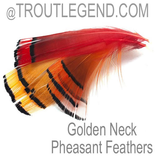 Golden Neck Feathers Hand Select