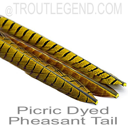 TL Picric Dyed Select Pheasant Tails