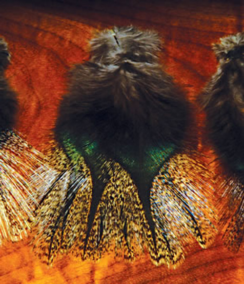 Coq De Leon Feathers by Hareline