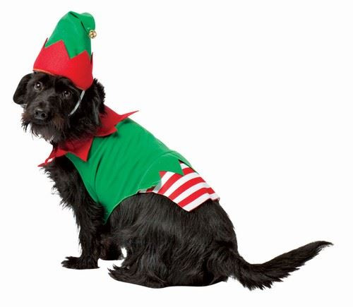 Christmas Elf Dog Pet Costume