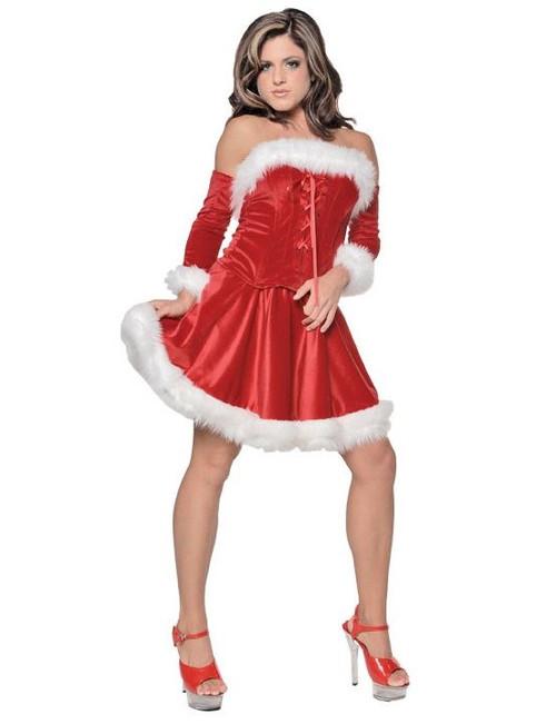 Women's Sexy Santa Christmas Costume 28841