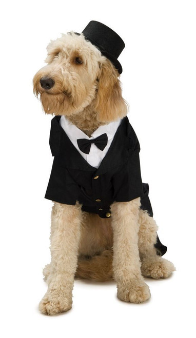 DAPPER DOG tuxedo hat pet wedding ring bearer bow tie halloween costume Large