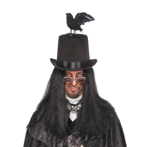 Raven top hat with Black bird