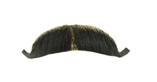 Rubie's Costume Co Gentlemans European Mustache, One Size
