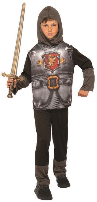 Boys Knight King Armor Printed Shirt Pants Hood Child Sized Halloween Costume