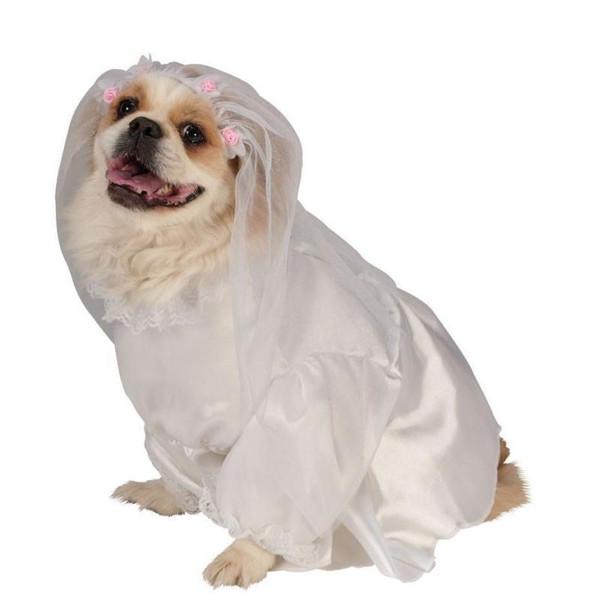 BRIDE DOG pets dogs wedding halloween white dress ANGEL costume S M