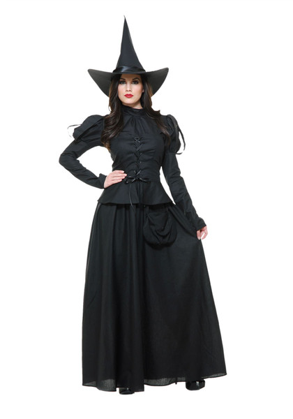 Womens Heartless Wicked Witch Adult Costume
