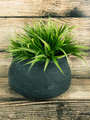 Matte Black Round Vase