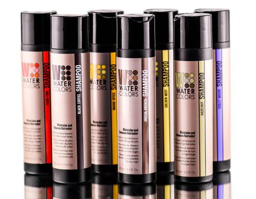 Tressa Watercolors Color Maintenence and Enhancing Shampoo
