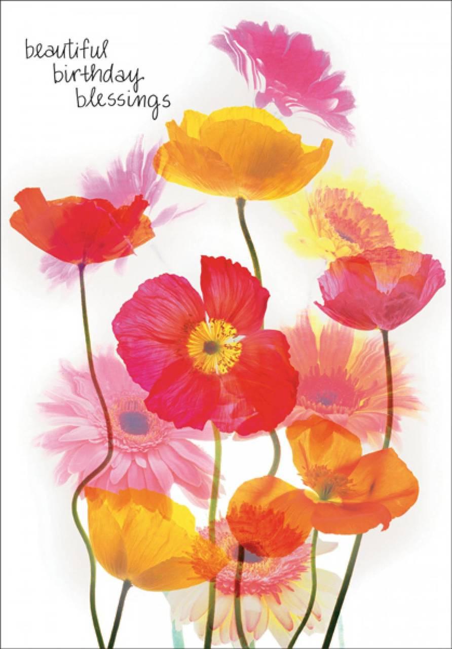 A Birthday Blessing - for Women/Girls  |Birthday Blessings