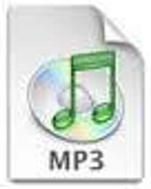 Tisha B'av 2 (7 MP3's)