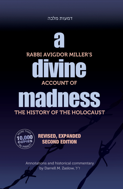A Divine Madness: Second Edition