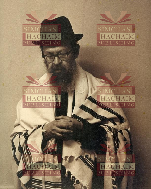 8x10 Picture — Rabbi Miller Pose