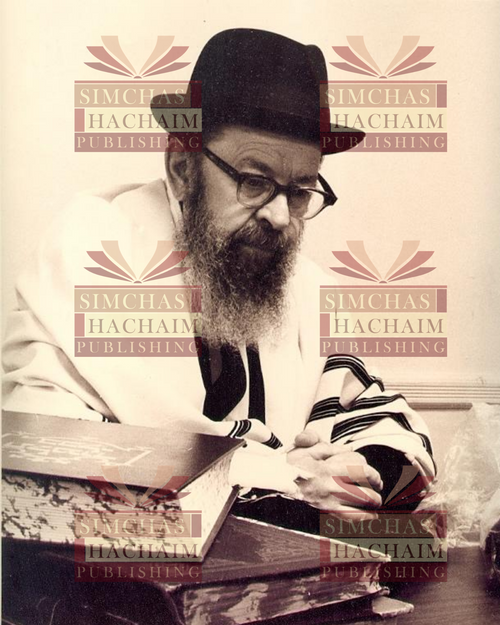 8x10 Picture — Rabbi Miller at Desk