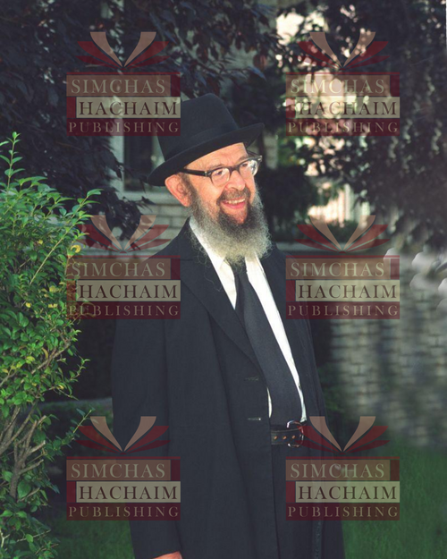 8x10 Picture — Rabbi Miller Garden