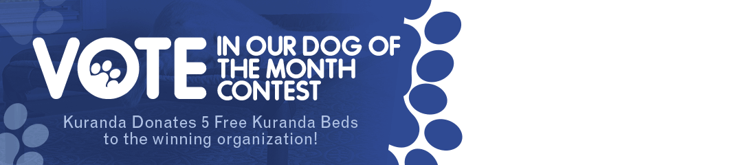 Vote in our Dog of the Month Contest. Kuranda Donates 5 Free Kuranda Beds to the winning organization!