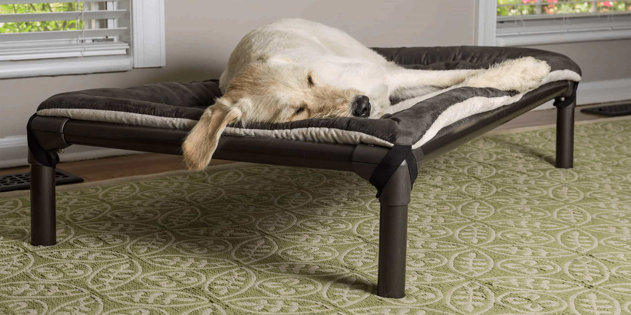Picture of: Kuranda Dog Beds Chew Proof Dog Beds