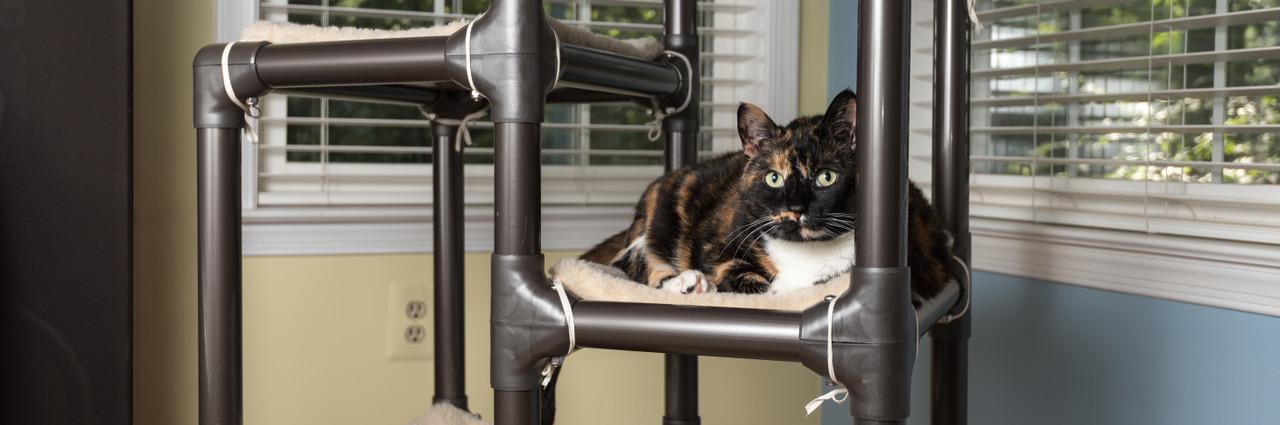 73f120301dcc Cat Products. Hygienic Kuranda Cat Beds ...