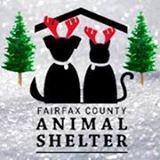 Fairfax County Animal Shelter receives 35 bed donations in 24 hours!