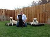 Canine Hope for Diabetics