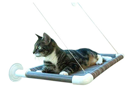 Kitty Cot