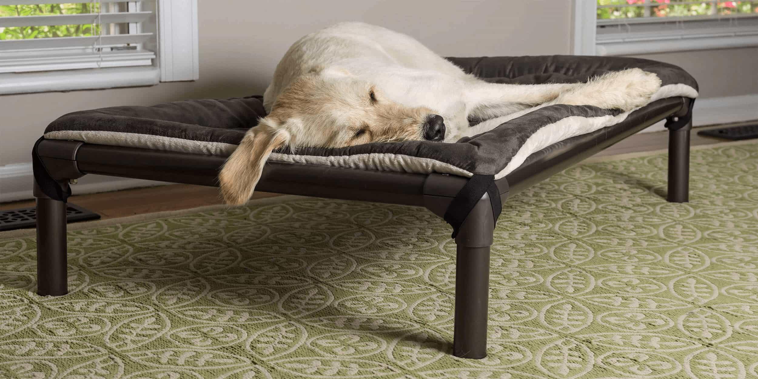 9bbe95291805 Kuranda Dog Beds® | Chew Proof Dog Beds