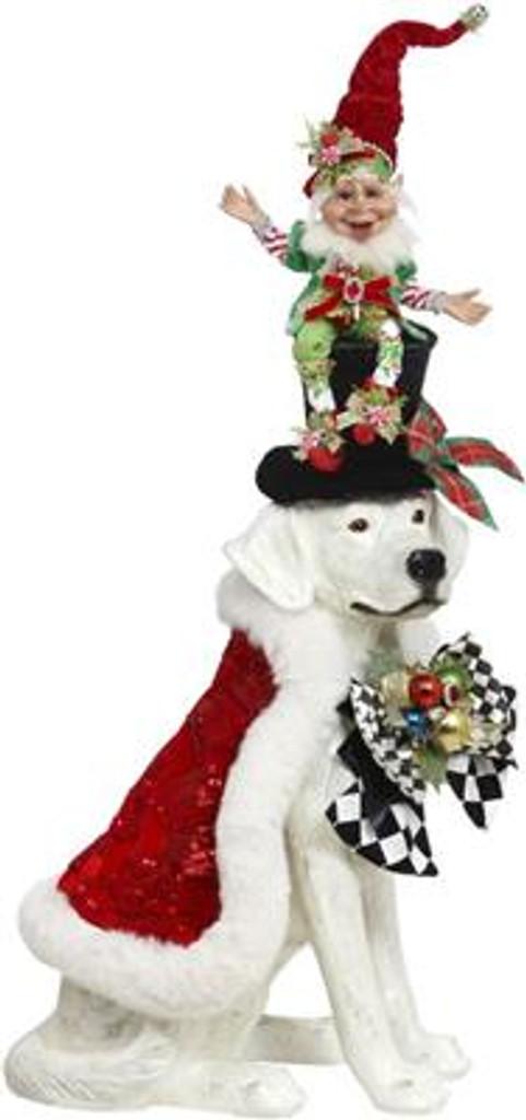 Christmas Dog With Elf Display