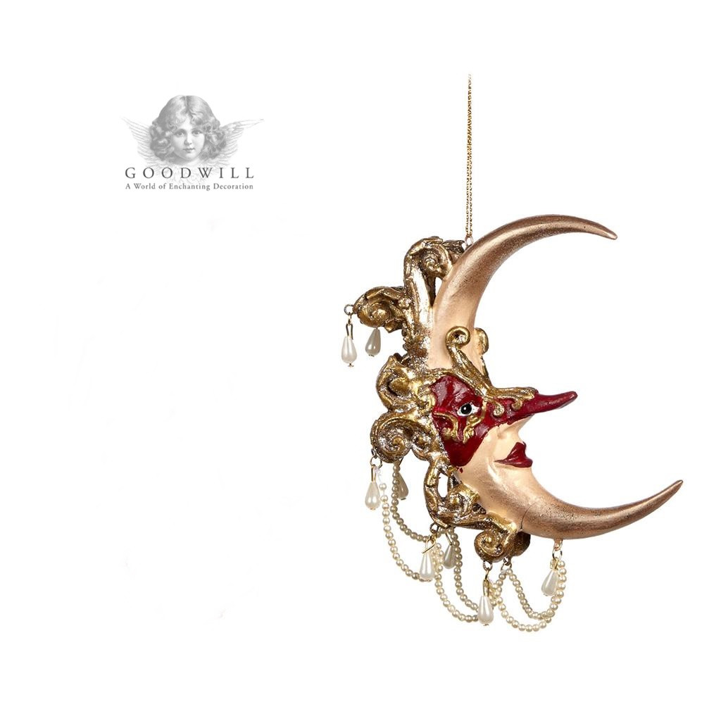 ACANTHUS MASKED MOON RD 13CM