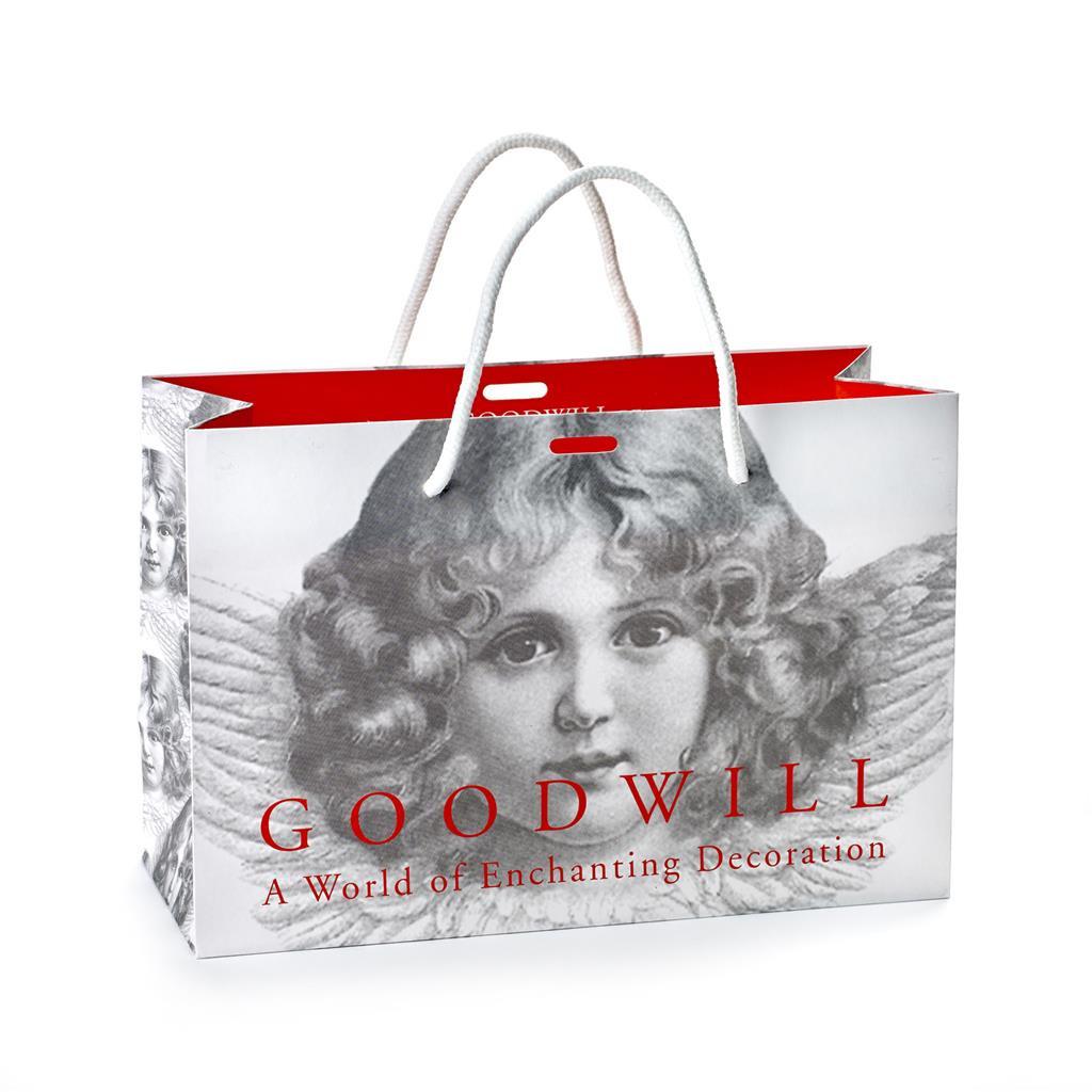 PAPER GOODWILL BAG 30/20/12CM