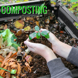 Composting - Why It's Important