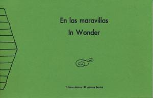 En las maravillas / In Wonder