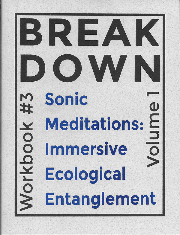 Break Down Workbook #3—Sonic Meditations: Immersive Ecological Entanglement