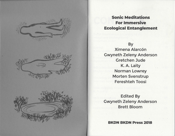 """Title page of """"Sonic Meditations for Immersive Ecological Entanglement"""""""