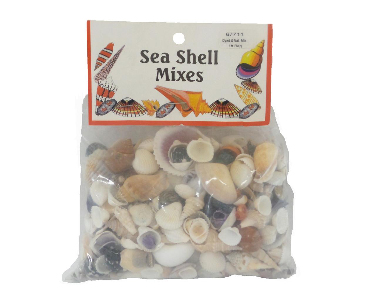 Dyed and Natural Mix Seashells