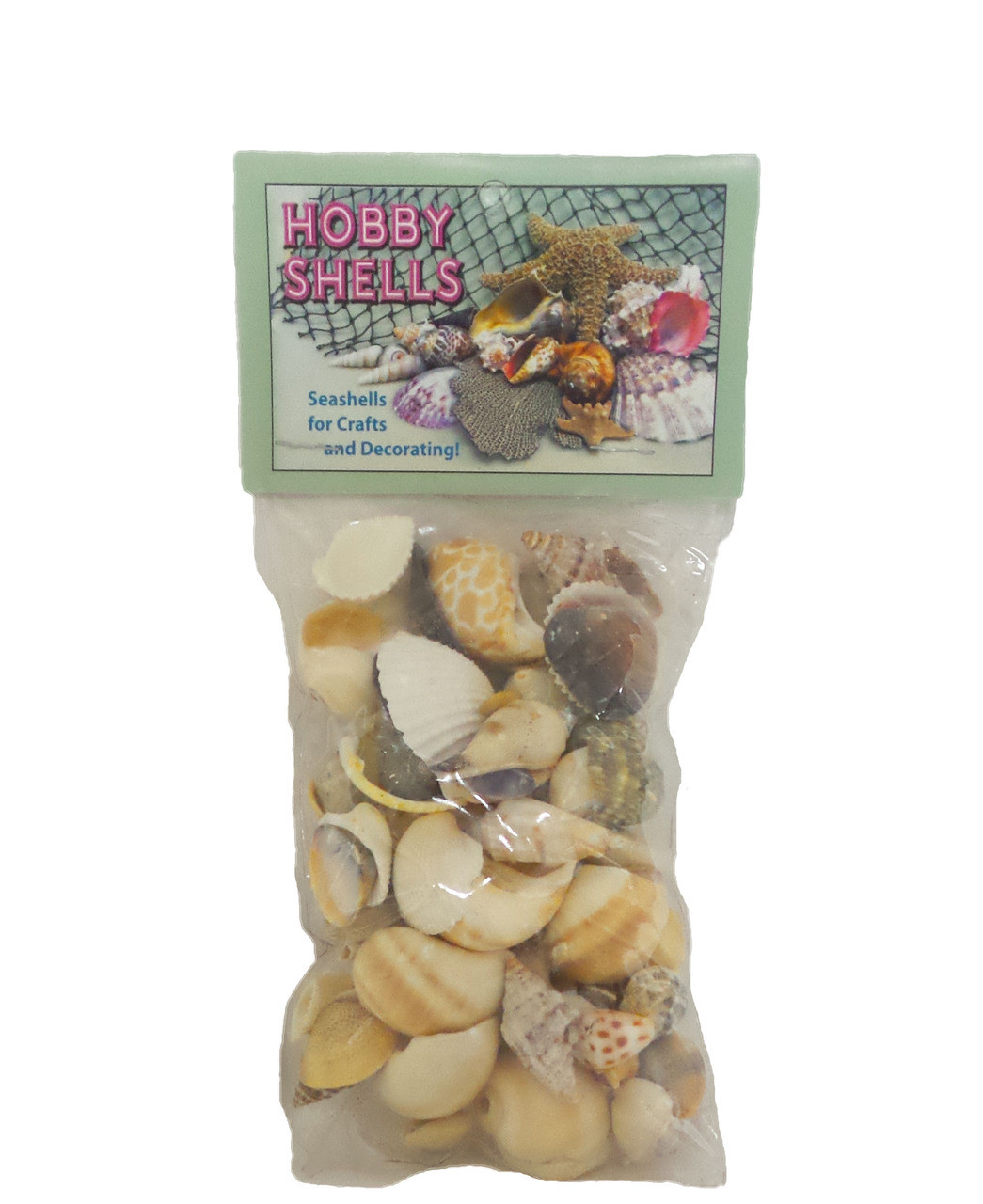 Small India Mix Seashells With Header