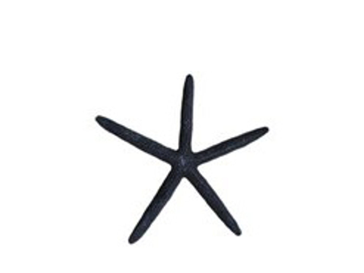 Dyed Black Finger Starfish 3 - 4""