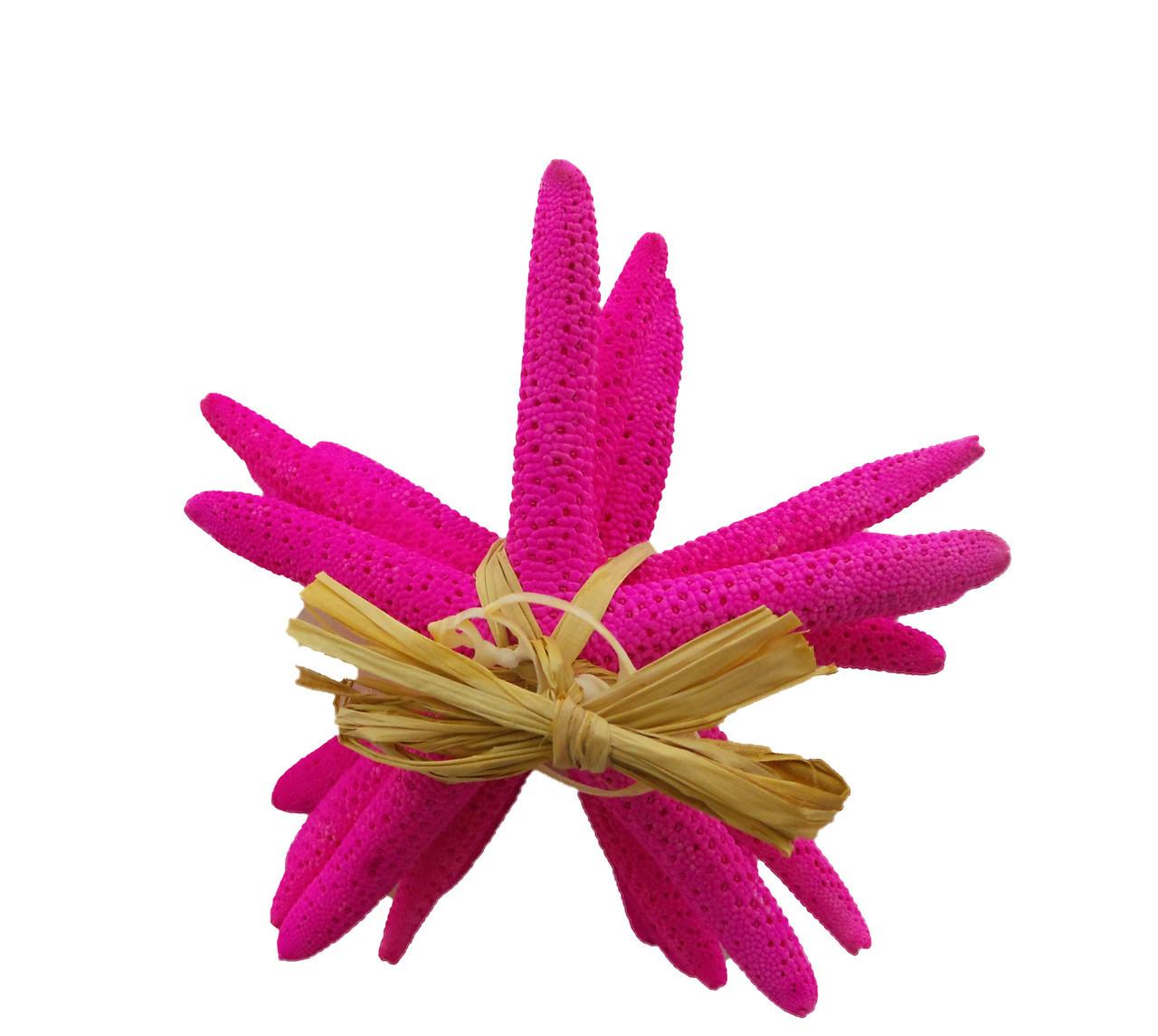 """Dyed  Pink Finger Stars Gift Bundle 4 - 5"""""""