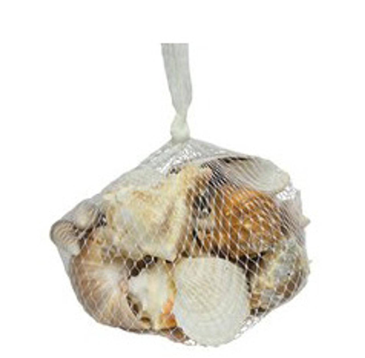 Medium Deluxe Shell Bag