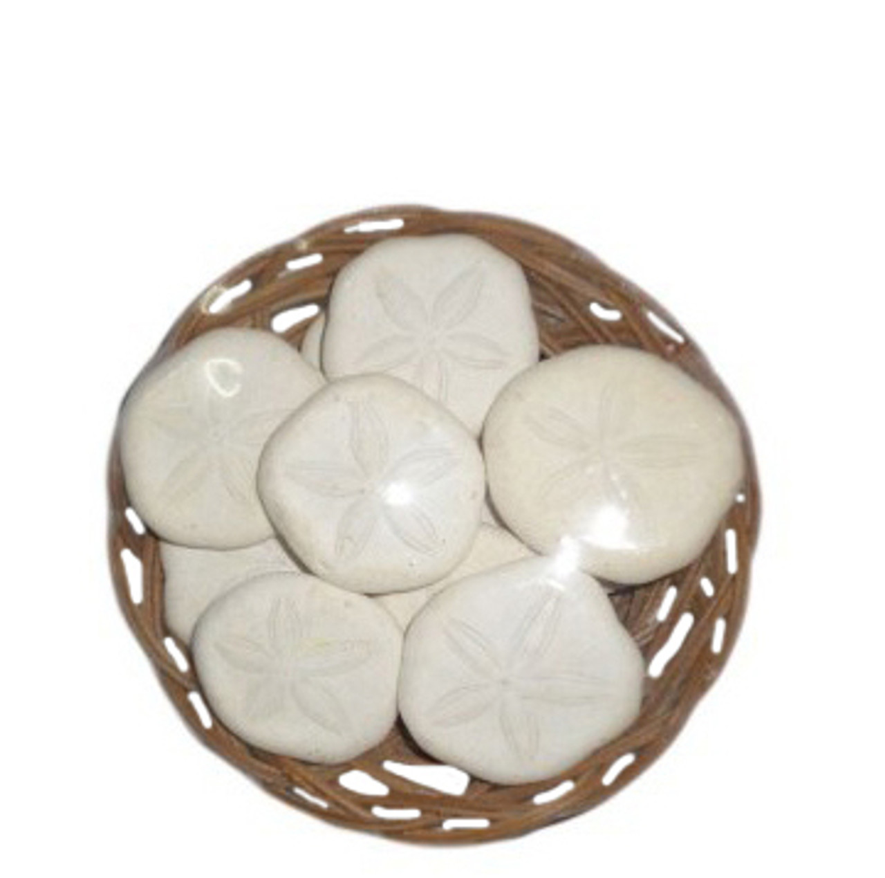 "Sea Cookies In 4"" Midrib Basket"