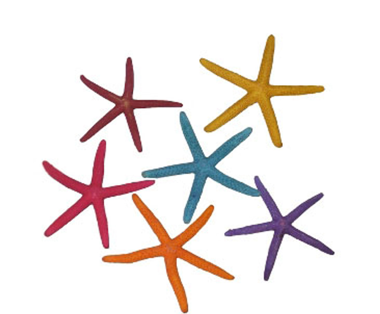 Ass't Dyed Finger Starfish