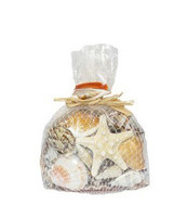 Dark Large Shell Mix W/Starfish Gift Pack