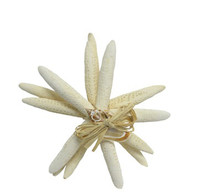 "White Finger Starfish Bundle 7 - 8"""