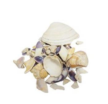 Assorted Broken Shells Mix