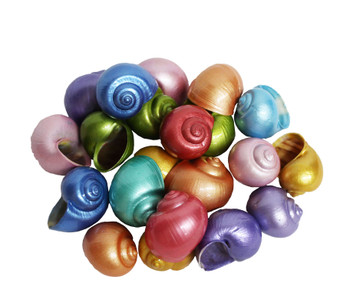 Dyed Pearl Small Apple Snail Coated Seashells
