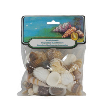 Small World Mix Seashells