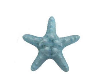 Dyed Light Blue Armoured Starfish