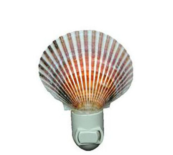 Caribbean Pecten Seashell Night Light