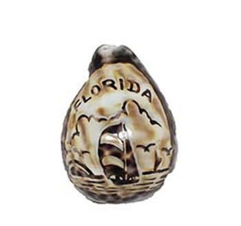 Carved Tiger Cowrie- Cut for Night Light - Florida