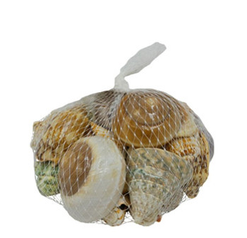 Deluxe Seashell Bag