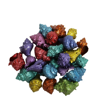 Dyed Metallic King's Crown- Small Coated Seashells